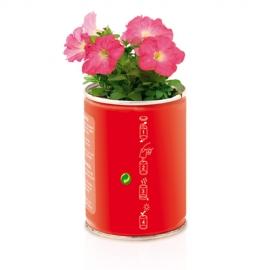 Planta Maceta en lata - Petunia