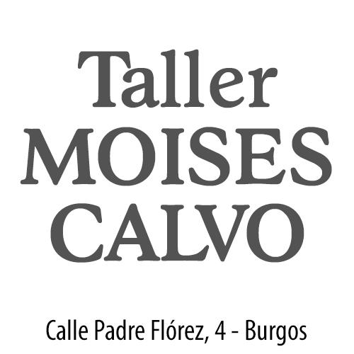 Moises Calvo - Citroën