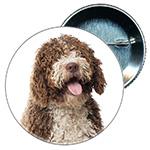 Chapa perro, mascota, mi mejor amigo, regalo personalizado